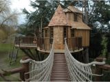 Home Tree House Plans 20 Amazing Treehouse Designs