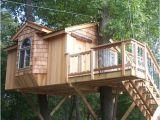 Home Tree House Plans Custom Tree House Design Tree House Plans