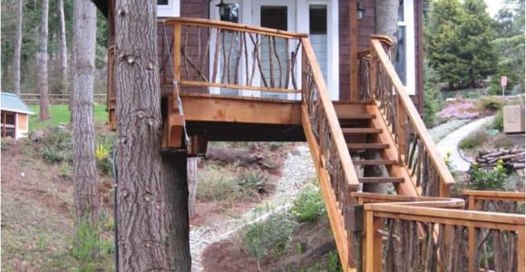 Home Tree House Plans How to Build A Treehouse In the Backyard