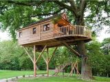 Home Tree House Plans Treehouse Architecture top 16 Tree House Ideas that