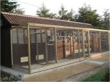 Homing Pigeon Loft Plans 143 Best Pigeon Lofts Images On Pinterest Homing Pigeons