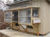 Homing Pigeon Loft Plans 69 Best Images About Pigeon Lofts On Pinterest Cover Ups