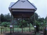 Large Bat House Plans Free Bat House Plans Florida Woodworking Projects Plans