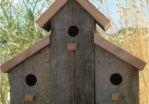 Large Bird House Plans Barn Birdhouse Pictures Joy Studio Design Gallery Best