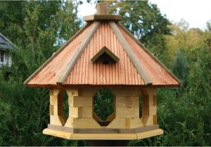 Large Bird House Plans Big Bird Feeders Plans Cleaner Ideas