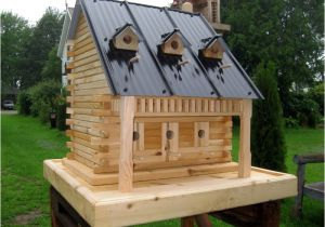Large Bird House Plans Extra Large Bird House Bird Cages