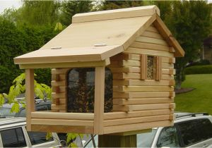 Large Bird House Plans Large Bird House Plans Log Awesome House Tips to Build