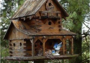 Large Bird House Plans Large Bird Houses Woodworking Projects Plans