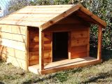 Large Breed Dog House Plans Giant Breed Dog House Plans