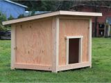 Large Dog House Building Plans Wood Dog House Plans Table Diy