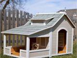 Large Dog House Plans with Porch Hundehaus Die Skurrilsten Beispiele Die Es Gibt
