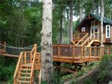 Large Tree House Plans 18 Amazing Tree House Designs Mostbeautifulthings