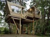 Large Tree House Plans 33 Simple and Modern Kids Tree House Designs Freshnist