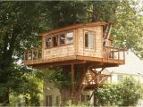 Large Tree House Plans How to Build A Simple Treehouse without A Tree Wooden Global