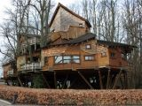 Large Tree House Plans Tree House Design Ideas for Modern Family