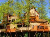 Large Tree House Plans Unusual Houses 120 Pics