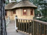 Livable Tree House Plans British Family is Living the Highlife In Treehouses by
