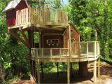 Livable Tree House Plans Livable Tree House Floor Plans