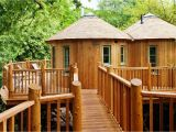 Livable Tree House Plans Livable Treehouses Tree Houses for Living Youtube