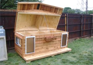 Make Your Own Dog House Plans Your Big Friend Needs A Large Dog House Mybktouch Com