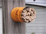 Mason Bee House Plans Bamboo 1000 Images About Mason Bee Houses On Pinterest