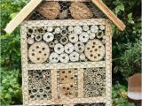 Mason Bee House Plans Bamboo 25 Best Ideas About Bee House On Pinterest Bees