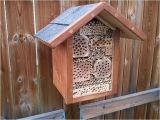 Mason Bee House Plans Bamboo 25 Trending Bee House Ideas On Pinterest Bees In House
