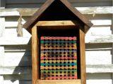Mason Bee House Plans Bamboo 28 Best Images About Mason Bee Stufg On Pinterest