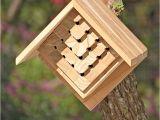 Mason Bee House Plans Teak Mason Bee House
