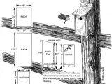 Mountain Bluebird House Plans Garden Girl 39 S Chi Simple Plan for Eastern Bluebird House