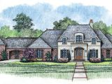 One Level French Country House Plans French Country House Plans One Story French Country House