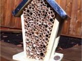 Orchard Mason Bee House Plans Make Your Own orchard Mason Bee House Gardening Pinterest
