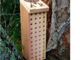 Orchard Mason Bee House Plans Mason Bee Box Blue orchard Bee House Remilled by