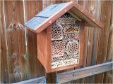 Orchard Mason Bee House Plans Mason Bees House Plans Insect Hotel Mason Bee House Plans