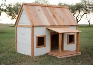 Outdoor Pet House Plans Dog House with Porch Buildsomething Com