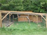 Peacock Housing Plans Post Pics Of Your Peafowl Pens Backyard Chickens