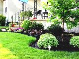 Perennial Flower Bed Plans for Front Of House Flower Bed Ideas for Full Sun Pictures Beautiful Black and