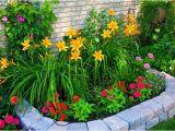 Perennial Flower Bed Plans for Front Of House Gestalten Sie Ihre Eigene Gartenschau Freshouse