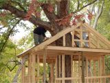 Plans for A Tree House Pictures Of Tree Houses and Play Houses From Around the