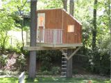 Plans for A Tree House Small Tree House Plans Fresh Small Tree House Plans Tree