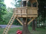 Plans for A Tree House Tree fort Ladder Gate Roof Finale Village Custom