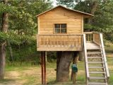 Plans for A Tree House Tree House Plans for Adults Simple Tree House Design Plans