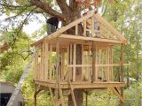 Plans for A Tree House Tree House Plans