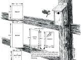 Plans for Bluebird Houses Bluebird Bird House Plans Salmaun Me