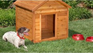 Plans for Building A Dog House 10 Free Dog House Plans Home Design Garden