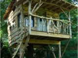Plans for Building A Tree House 37 Diy Tree House Plans that Dreamers Can Actually Build
