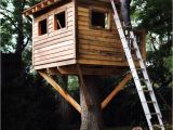 Plans for Building A Tree House 9 Diy Tree Houses with Free Plans to Excite Your Kids