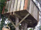 Plans for Building A Tree House How to Build A Treehouse