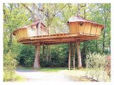 Plans for Building A Tree House Luxury Plans for Building A Tree House New Home Plans Design