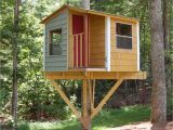 Plans for Building A Tree House San Pedro Treehouse Diy Plans to Fit A Single Tree